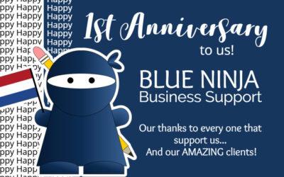 Blue Ninja are celebrating one year of partnership